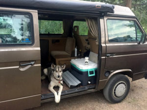 Doggie in the Van